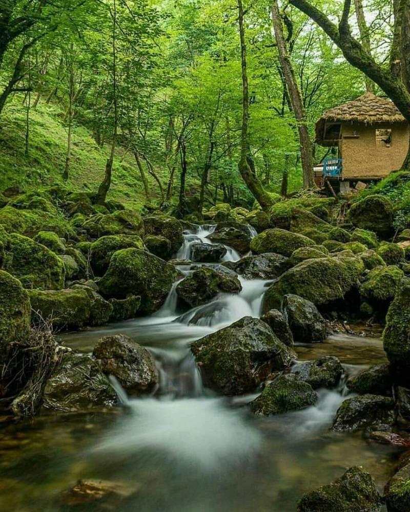 اجاره ویلا قلعه رودخان  براحتی در سایت کومه جا انجام می شود